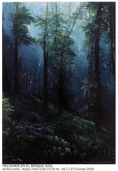 helechos-en-el-bosque-azul-mv20162709-0-50-x-0-70-mt-fb