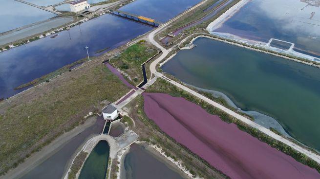 Inquinamento del mare, un altro caso