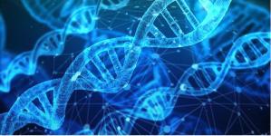 DNA, fondamentale per i pazienti oncologici