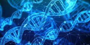 Filamenti di DNA