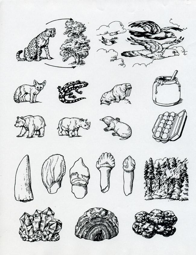 Untitled Document [www.marcsilva.com]