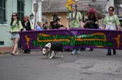 2009-Mystic-Krewe-of-Barkus-Mardi-Gras-French-Quarter-New-Orleans-Dog-Parade-0499