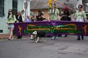 2009-Mystic-Krewe-of-Barkus-Mardi-Gras-French-Quarter-New-Orleans-Dog-Parade-0499