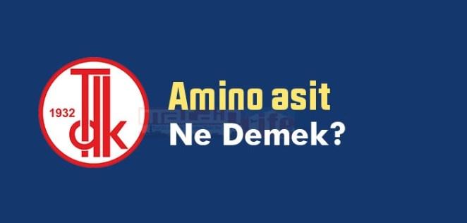 Amino asit ne demek? TDK'ya göre Amino asit sözlük anlamı nedir? 13
