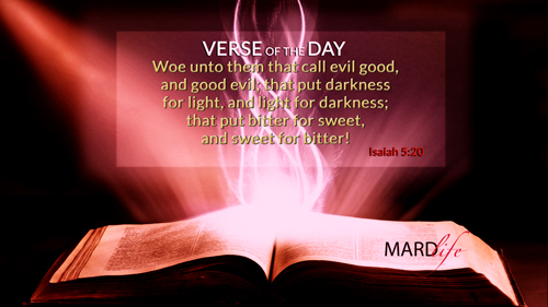 Verse Of The Day: Isaiah 5:18-24