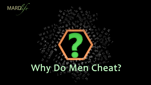 Why Do Men Cheat? – RHETORICS