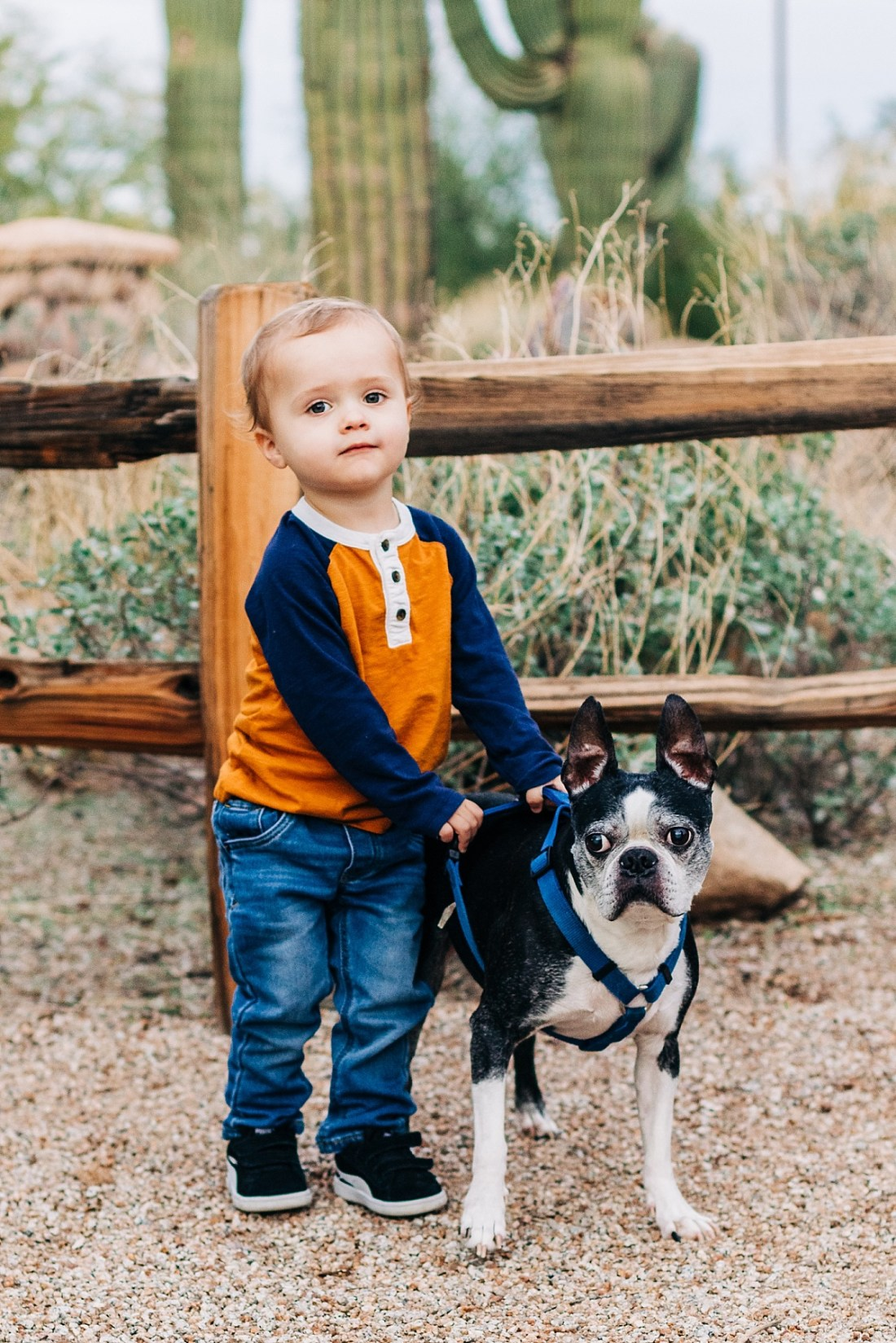 Riparian Preserve at Water Ranch | Mini Session