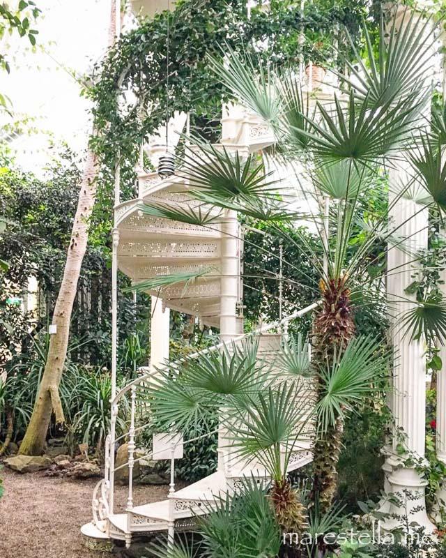 Palmenhaus_marestella (4 von 17)
