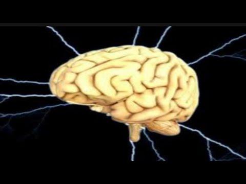 के तपाईलाई थाहा छ मस्तिष्कले कसरी सम्झिन्छ समय र स्थान ?