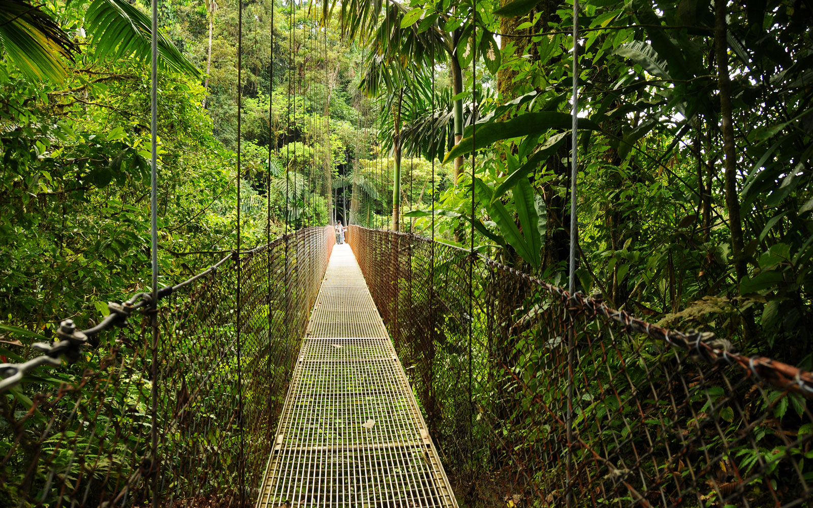 Treasured National Parks In Costa Rica