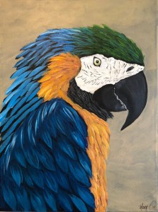 Colorful Macaw - Level 3