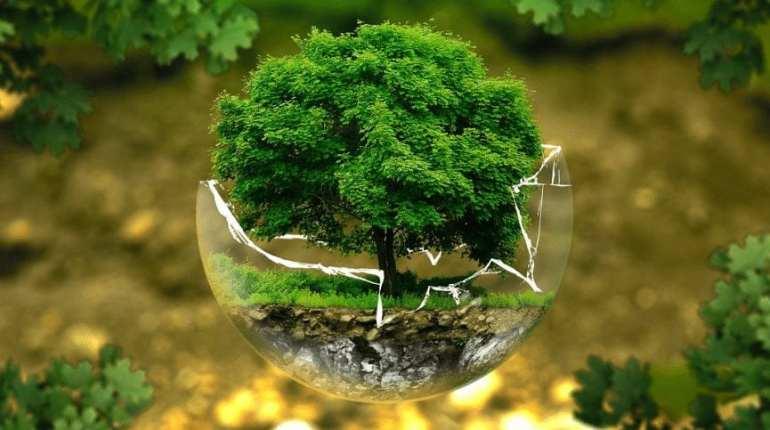 Écart générationnel – Mode de vie écologique, pas que pour l'écologie!