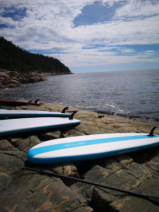 Paddle board côte-nord