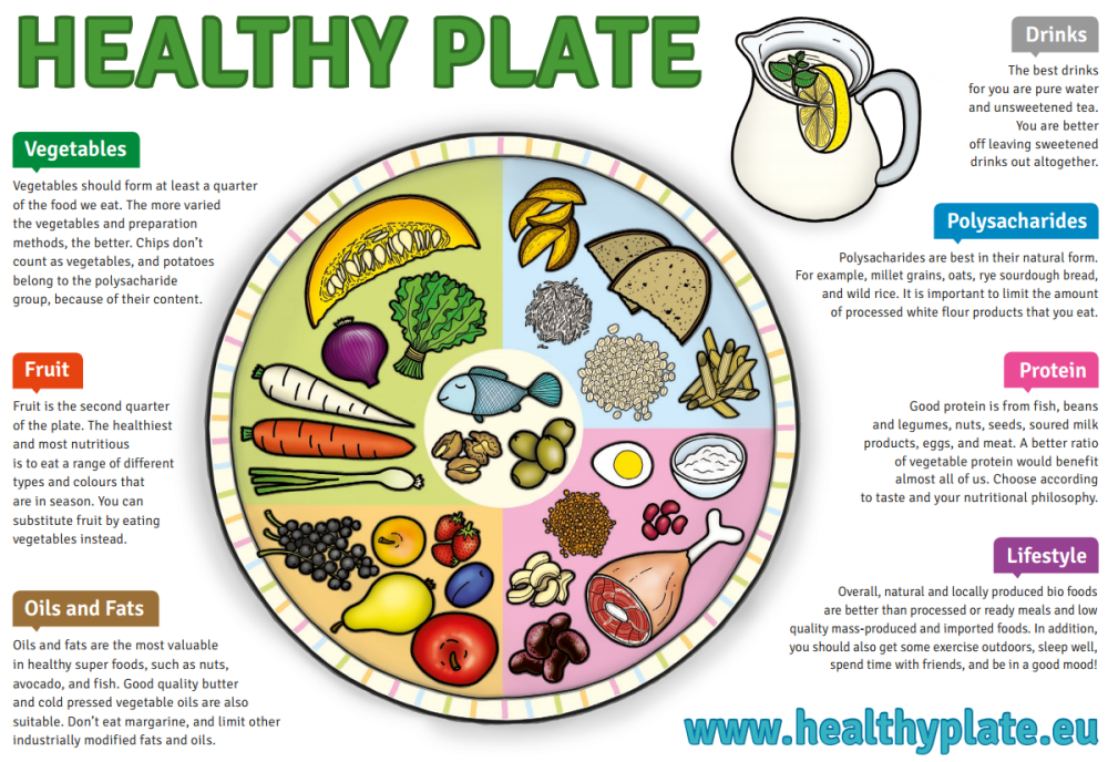 medium resolution of nutrition health coach prague margit slimakova m sc ph d food group diagram diagram of healthy eating plate