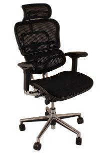 Ergohuman Office Chairs | Ergohuman Chairs | Margolis ...