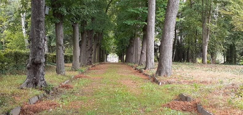 Das Arboretum zuAnfang September
