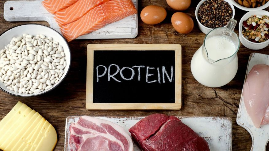Protein To Reduce Your Belly Fat
