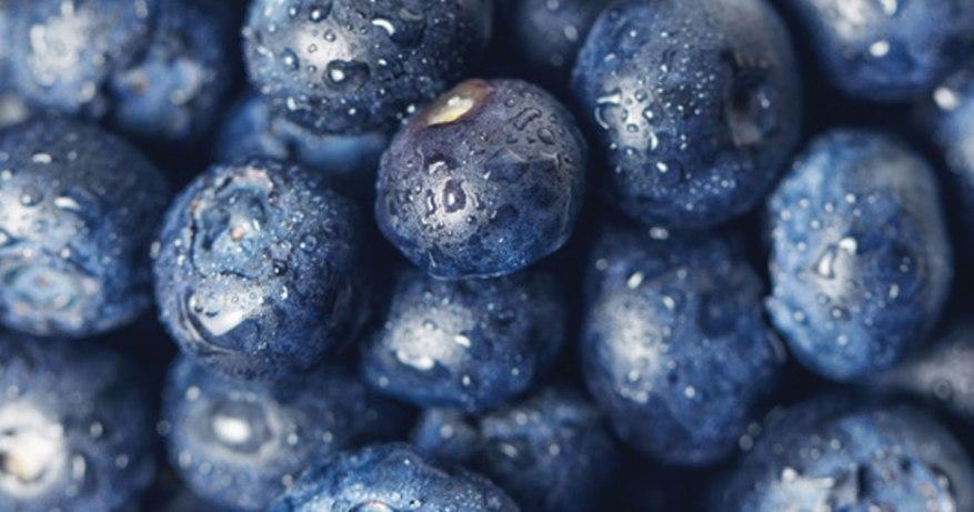 blueberries for brain