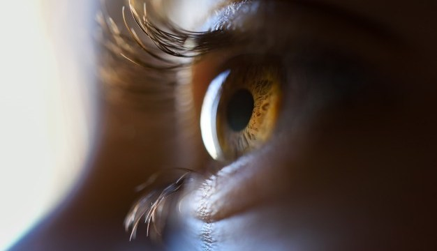What the eyes say about your health