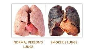 Damage Respiratory System