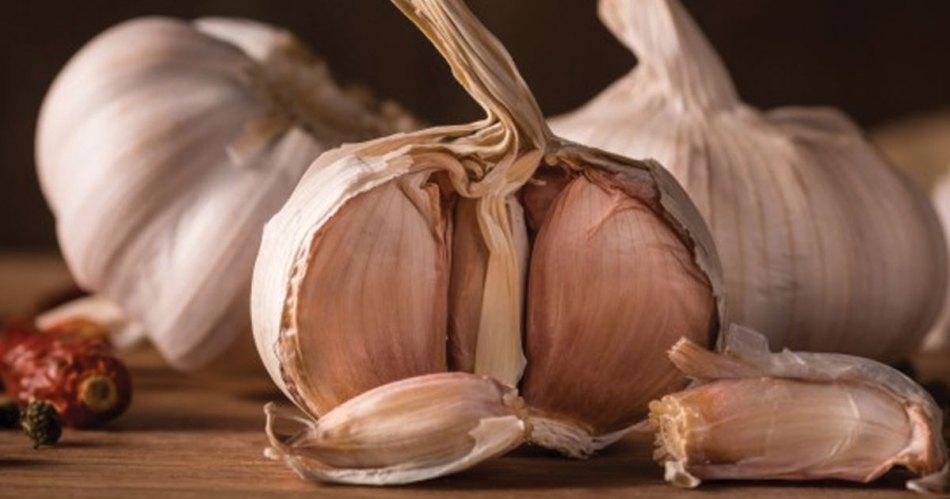 garlic causes bad breath
