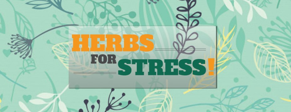 Powerful Herbs to Reduce Stress