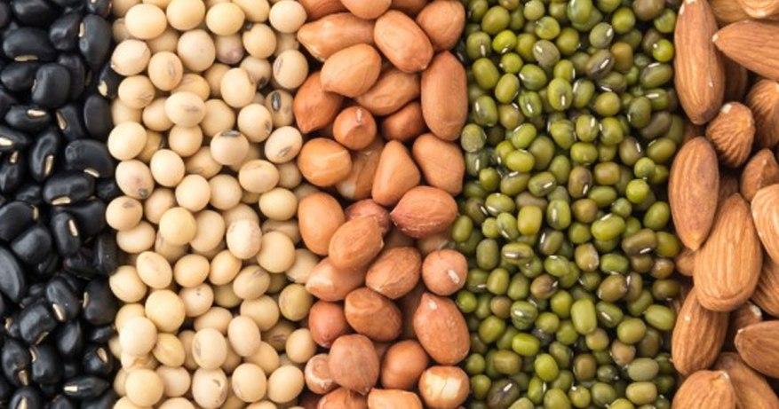 beans for cancer