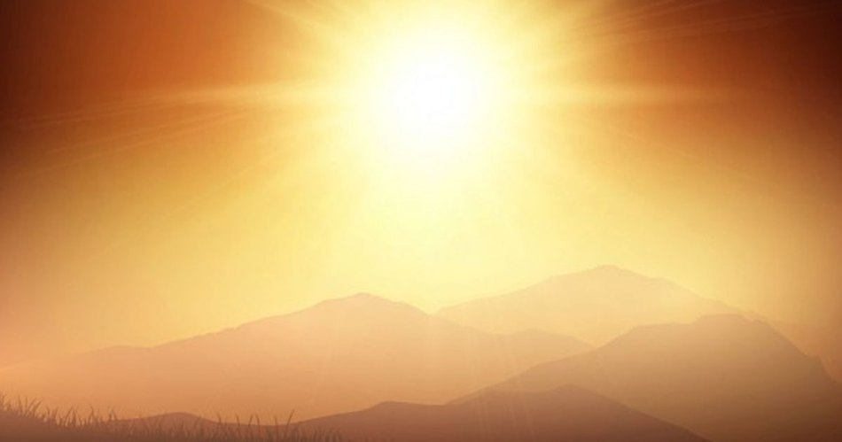 Soak up Some Sun