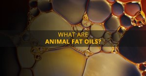 12 Health Hazards of Consuming Animal Fat Oils