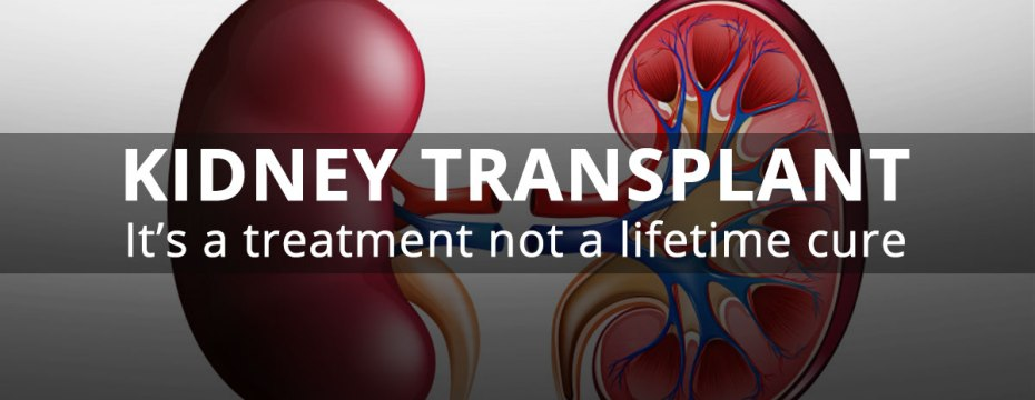 Essentials to Consider before Kidney Transplantation