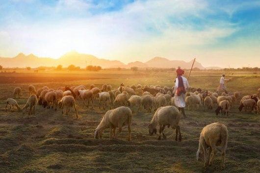 health scenario in rural areas