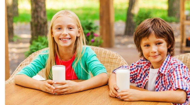 ispaghol benefits for energy and freshness