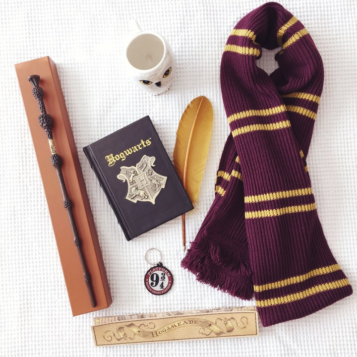 Flat lay_Harry Potter