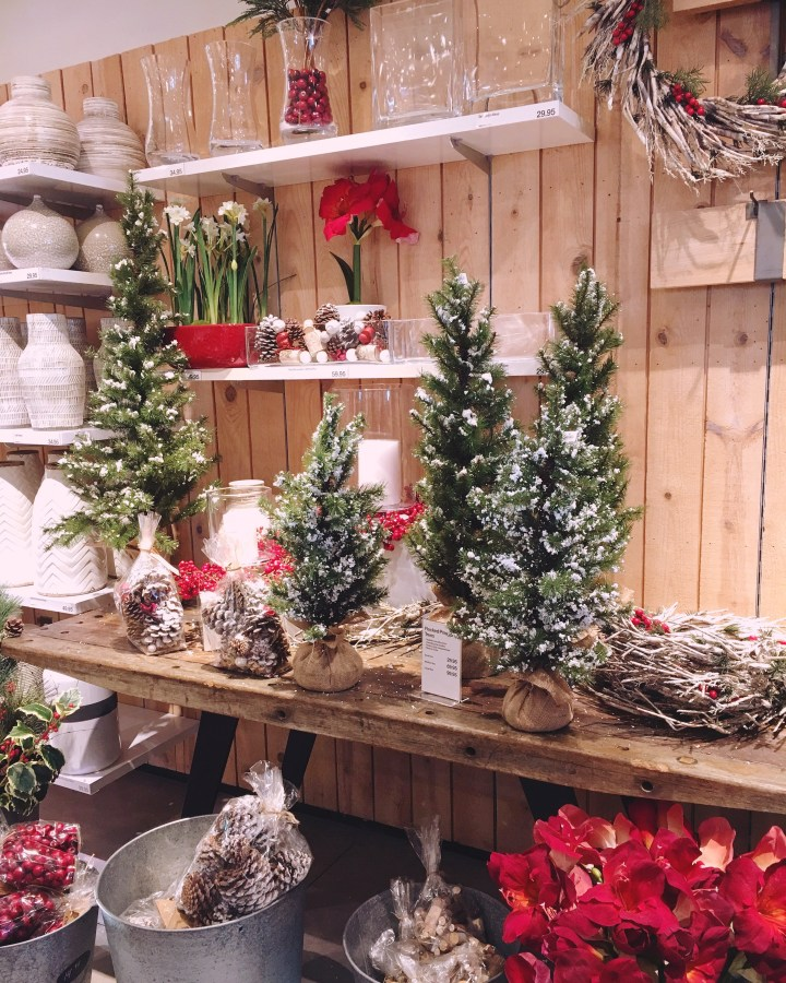 Crate and Barrel things for Christmas