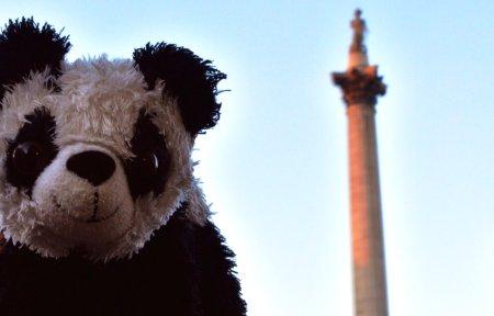 Benji at Trafalgar Square