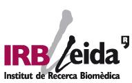 logo-irblleida
