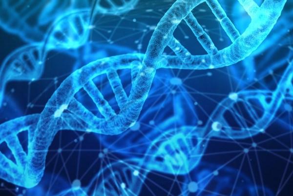 RNA_Interferencia_Amiloidosis_Biotecnologia_Maria_Iranzo_Biotec