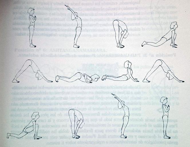 Yoga básico: Suryanamaskar