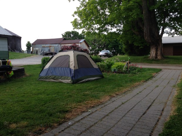 Cycle touring with kids (ages 6, 4, and 2) - camping on a farmer's lawn