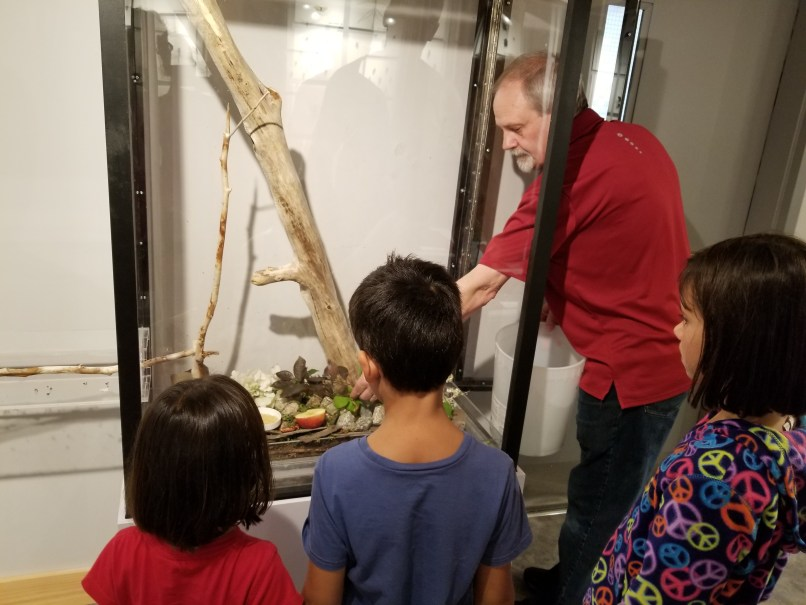 "Lloyd, owner of the Newfouland Insectarium and Butterfly Garden, ""feeding"" the leaf cutter ant colony, with three children watching."