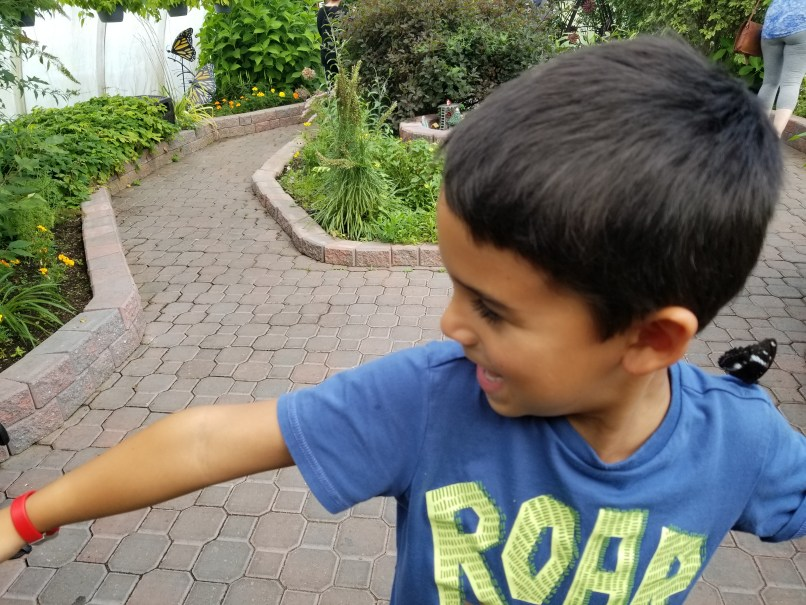 Boy sticking out his arm, with a butterfly on his shoulder.