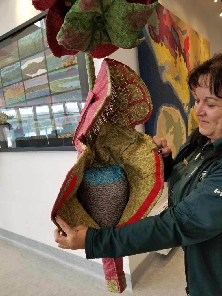National Parks Employee displaying the pitcher plant model at Tablelands Discovery Centre, Gros Morne National Park.