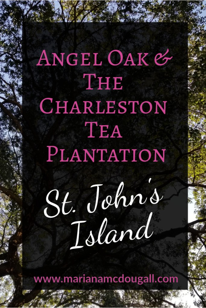 Pinterest Title Image: Angel Oak & The Charleston Tea Plantation, St. John's Island. www.marianamcdougall.com. Photo of Angel Oak tree in background