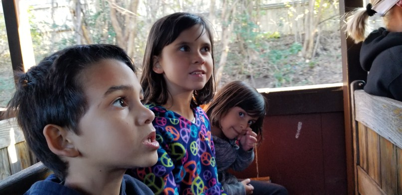 A boy and two girls sitting in the train at Six Flags Over Texas