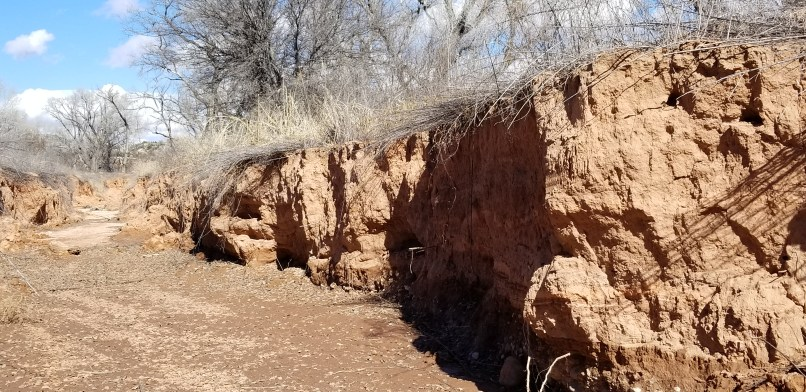 Dead horse ranch state park hiking trail. A small canyon.