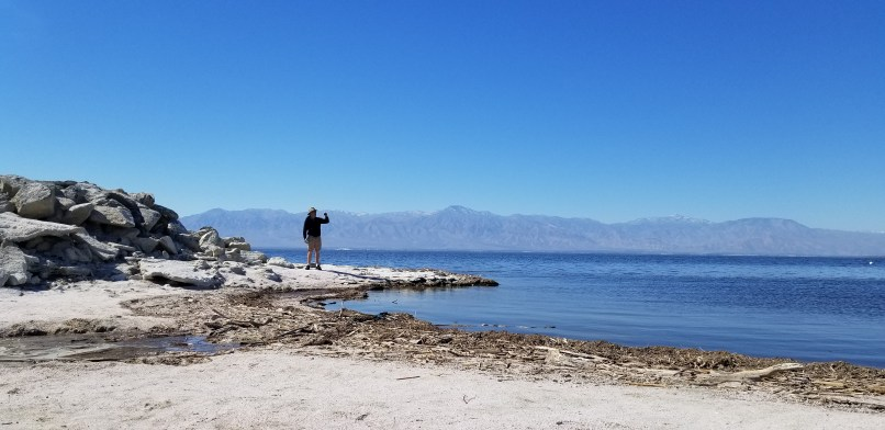 Man standing on a rock and taking a cell phone photo of the Salton Sea.
