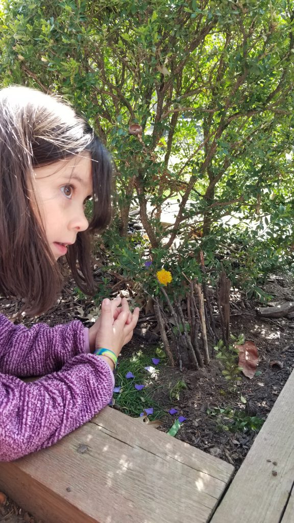 girl looking at a flower in the garden