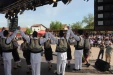 Festivalul Laleaua Pestrita, 2015 2