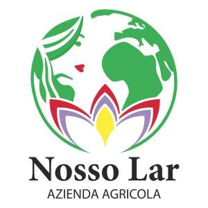 Logo Nosso Lar