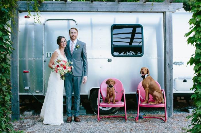 Marianmade Farm Wedding Dogs by Maine Tinker